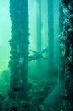 与轻潜水员的Busselton跳船人为礁石 库存照片
