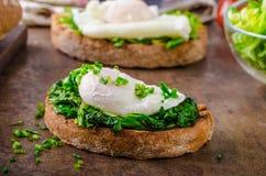 与水煮的eggg和菠菜的面包 库存图片