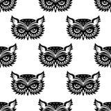与黑猫头鹰的无缝的样式 免版税库存照片