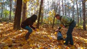 与整理一个的小男孩的年轻家庭离开 股票视频
