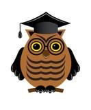 与玻璃和一个毕业生帽子的明智的猫头鹰 免版税库存图片