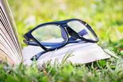 与玻璃的一本开放书在草甸 免版税库存照片