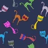 与玻璃的五颜六色的猫 无缝的模式 免版税库存照片