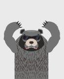 与玻璃的恼怒的北美灰熊 也corel凹道例证向量 库存例证