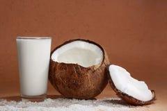 杯椰树牛奶用椰子 库存图片