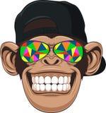 与玻璃的滑稽的猴子 免版税图库摄影