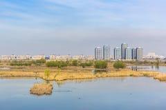 与水生生态系的都市风景 免版税库存图片
