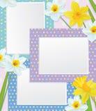 与黄水仙的传染媒介空的照片框架。 库存照片
