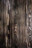 与结的布朗墙壁木纹理背景 免版税库存照片