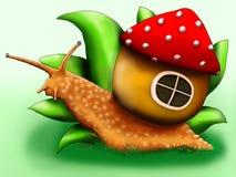 与他的房子的明亮的蜗牛有蘑菇屋顶的在草的 库存图片