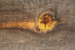 与结的木纹理 库存图片