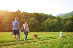 与他们的爱犬的年轻家庭,金毛猎犬 免版税库存图片
