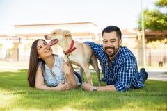 与他们的父母的友好的狗 免版税库存图片