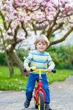 与他的第一辆自行车的小的小孩孩子男孩骑马 免版税库存图片