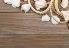 与绳索的贝壳在棕色木板 免版税库存图片