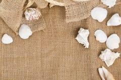 与绳索的贝壳在棕色粗麻布布料 免版税库存图片