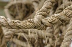 与结的绳索 免版税库存图片