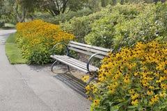 与黑眼睛的苏珊花的公园长椅 图库摄影