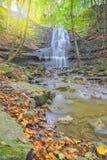 与水秋天的美好的秋叶 库存照片