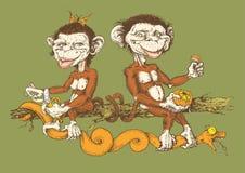 与滑稽和逗人喜爱的猴子的原罪 库存照片