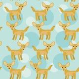 与滑稽的逗人喜爱的动物的非洲Fennec Fox无缝的样式在b 库存图片