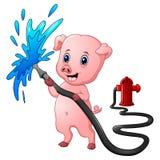 与水管喷洒的水和消防龙头的动画片猪 库存图片