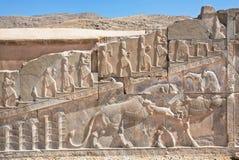 与索罗亚斯德教教徒-战斗的公牛和狮子,波斯波利斯的标志的浅浮雕 图库摄影