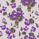 与紫罗兰的葡萄酒无缝的花卉背景 免版税图库摄影