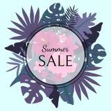 与紫罗兰色棕榈叶、桃红色花和词夏天销售的卡片 库存图片