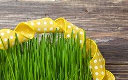 与黄色丝带的绿草 免版税库存图片