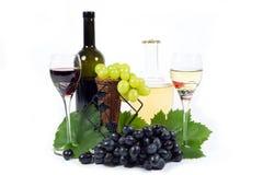 与绿色叶子、两酒杯杯和酒瓶的新鲜的红色和白葡萄充满被隔绝的红色和白葡萄酒 免版税图库摄影