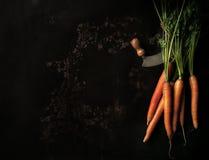 与绿色叶子和刀子的未加工的红萝卜在一个老金属盘子 库存图片