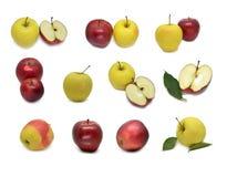 与绿色叶子和切片的红色黄色苹果 免版税库存图片