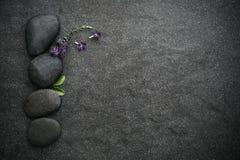与绿色叶子和小逗人喜爱的紫色花12月的黑石头 免版税库存图片