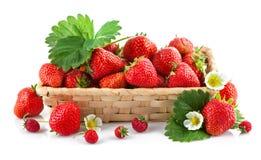 与绿色叶子和花的篮子新鲜的草莓 库存照片