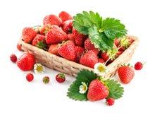 与绿色叶子和花的篮子新鲜的草莓 免版税库存照片