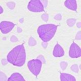 与紫色叶子油漆的白色墙壁纹理 库存照片