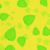 与绿色叶子油漆的黄色墙壁纹理 免版税库存图片