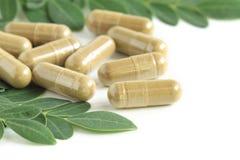 与绿色叶子的含油椒木属胶囊 免版税库存图片