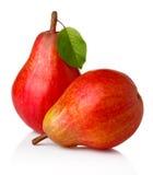 与绿色叶子的成熟红色梨果子  库存照片