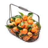 与绿色叶子的新鲜的有机蜜桔果子 免版税图库摄影