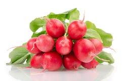 与绿色叶子的新鲜的红色萝卜 免版税图库摄影