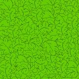 与绿色叶子的无缝的样式。传染媒介。 库存照片