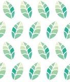 与绿色叶子的无缝的花卉样式 库存例证