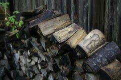 与绿色叶子的木堆 库存照片