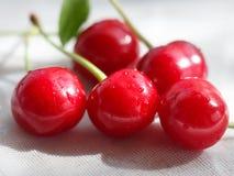 与绿色叶子的甜红色樱桃莓果在白色背景 选择聚焦 免版税库存图片