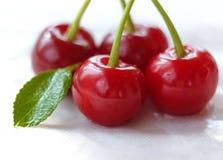 与绿色叶子的甜红色樱桃莓果在白色背景 选择聚焦 免版税图库摄影