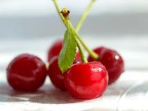 与绿色叶子的甜红色樱桃莓果在白色背景 选择聚焦 库存图片