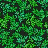 与绿色叶子的花卉无缝的样式 库存照片
