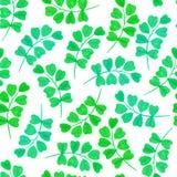 与绿色叶子的花卉无缝的样式 库存图片